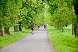 cykloprohlidka zameckeho parku veltrusy